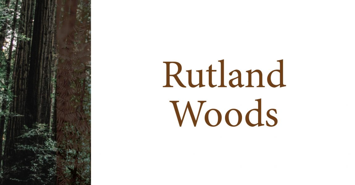 Rutland Woods | Work Party Results
